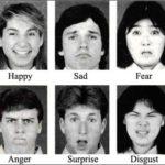 ¿Cuál es la emoción que más nos ayuda a evolucionar?