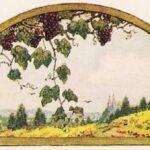 La fábula del zorro y las uvas – moraleja (disonancia cognitiva)